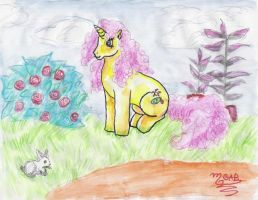 Stop and smell the roses by Sapphire-Light