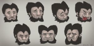 Wolf Facial Expressions by EmilisB