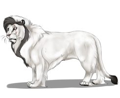 Issan | Whitelander Lion | Royal Betrothal by orengel