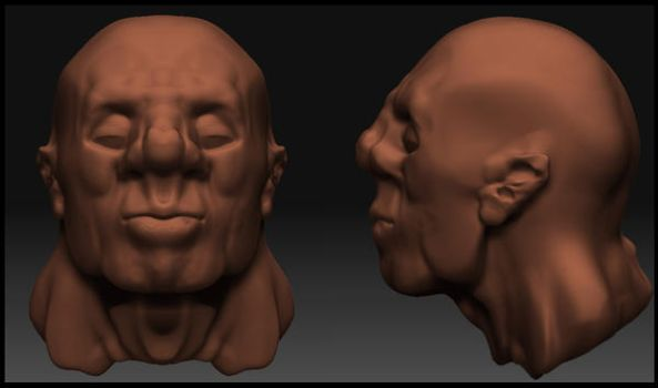 3d head by Lundqvist1