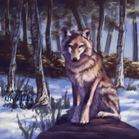 Winter Wolf by Nivailis
