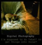 Demot. - Digital Photography by Ironhold
