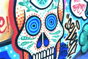 Mexican Skull by Libayne