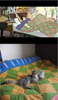 The Cat Returns : Haru's Bed Cover by QueenRebecca