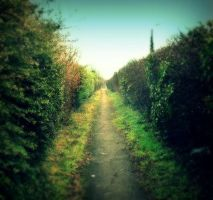 Passage -gnash-pie edit- by pictsy