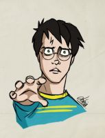 HP: Harry in Deathly Hallows by Loleia