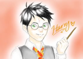 Harry by arcus-puera