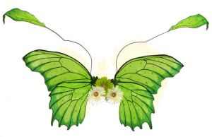 Green Spotted Tropical Wings by customfairywings