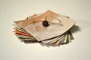 The Artist's Book - spiralled by ArVaWe