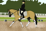 Chico Dressage Entry by Starcather9