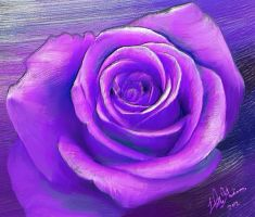 Purple Rose Oil painting by Nimily