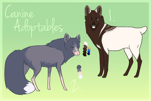 Canine Adoptables (2/2 Available) by VexiWolf