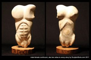 male-female continuum, two sides to every story by SculptorBoris