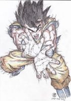 Son Goku - scanned by ReficulNatas