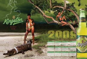 Kingston Beer 2009 Calendar by nabafied