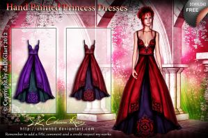 Hand Painted Princess Dresses by DIGI-3D