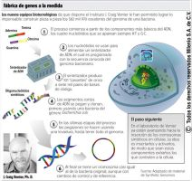 Cell Infography by Aiestesis