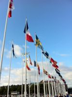 Gothia Cup flags. by TossarN