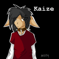 Kaize Human Formm by ScarlettFire
