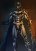 Batman Injustice by dushans