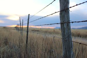 Fence at sunset 1 by akaleus
