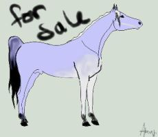 For Sale 6 SOLD by angry-horse-for-life