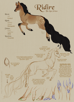 Fawnling OC: Ridire Concept Sheet by FRivArts