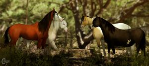 [MQ] diRPG | Meet up in the woods by FeatherCandy