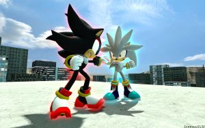 Shadow VS Silver by Someguy2132