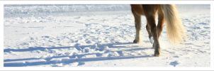 A walk through the snow by Caoshica