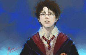 Harry Potter by woshibbdou