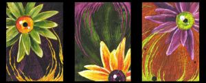 Encaustic Optical Daisies by VaraAnn