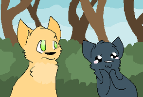 Fireheart and Cinderpelt by Skybers