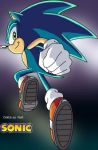Sonic X - Gotta go fast by hedgie8520