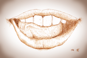 Not My Lips by mbah