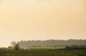 Color of The Morning 89 by dearchivism