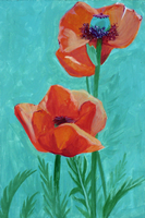Poppies by Vineris