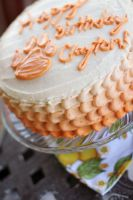 White Cake 5 by laurenjacob