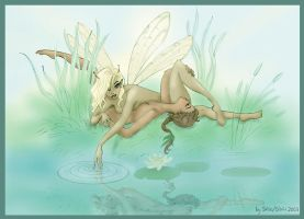 Water Faeries by SalixTree