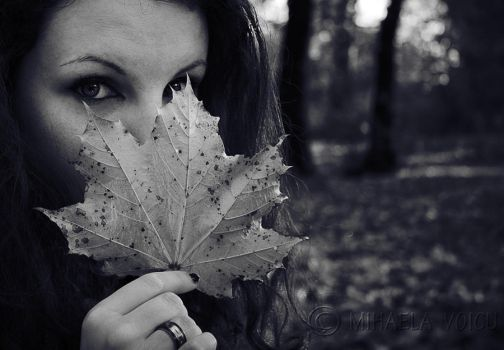 Autumn ID 2010 by SnakeDemon