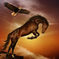 Flight Of The Eagle by Eagle-Cry-Designs