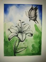 Butterfly Lily Canvas by pandan7