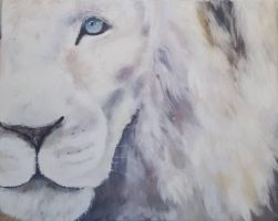 White Lion  by kilotango4