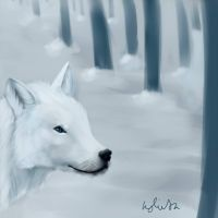 white wolf snow trees by umbreon17