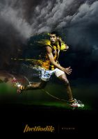 Hawthorn FC by methodikstudio