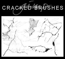 6 Cracked Brushes by dcmbrnite