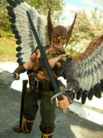 Hawkman request by TBolt66