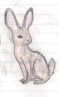 Jack Rabbit by Perry--Agent