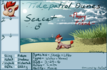 Pocket Island - Seacat by EnterTheDwelling