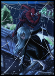 Spidey and Black Cat by Law67